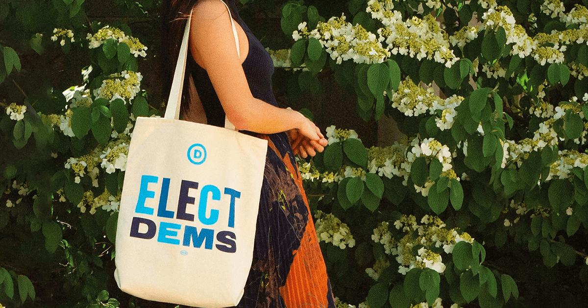Democrat DEM Retro Election Donkey Vintage Large Canvas Tote Bag Women